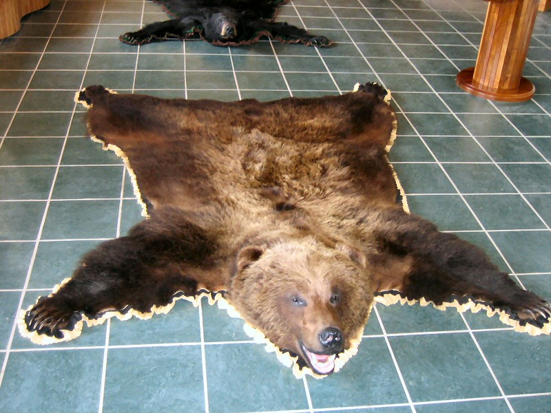 Black Bear Rugs Brown
